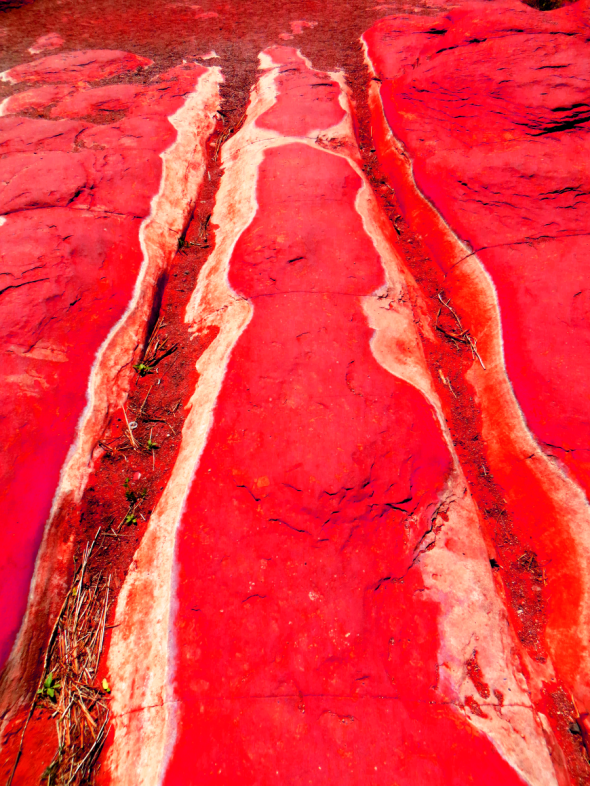 Riverbed_Red_0594_a_1_red_thumb